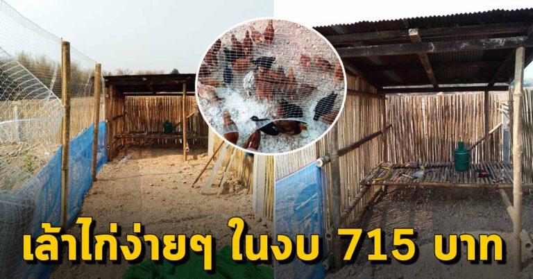 การสร้างเล้าไก่พอเพียง ในงบ 715 บาท สร้างง่ายใช้งานดี