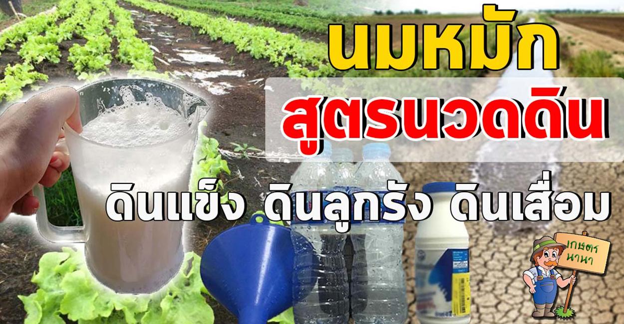เกษตร นานา Kaset NaNa สูตรน้ำหมักปรับสภาพดิน ช่วยให้พืชดูดซับสารอาหารได้ดีขึ้น
