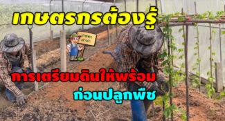 เกษตรกรต้องรู้ การเตรียมดินให้พร้อม ก่อนปลูกพืช