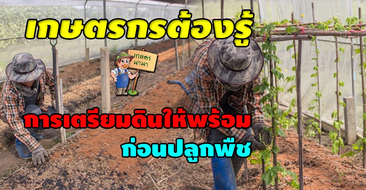 เกษตร นานา Kaset NaNa เกษตรกรต้องรู้ การเตรียมดินให้พร้อม ก่อนปลูกพืช