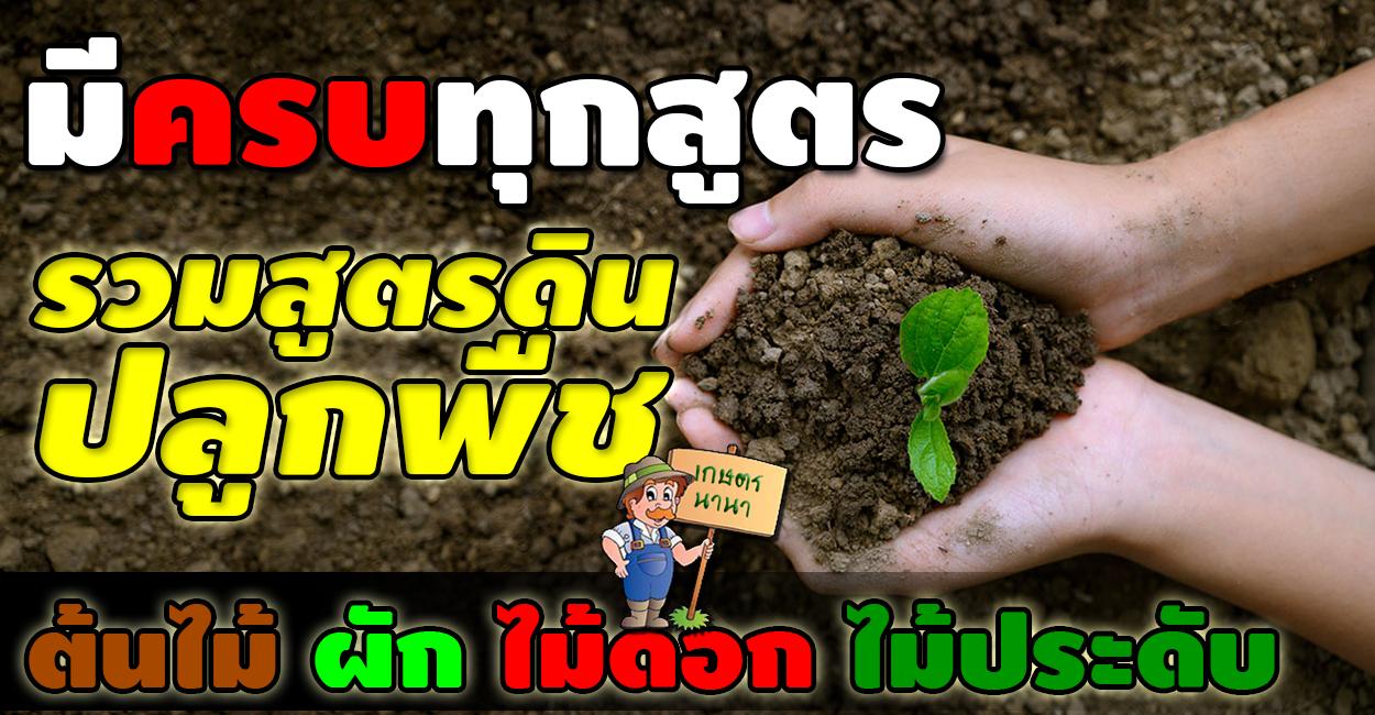มีครบทุกสูตร รวมสูตรดินปลูกพืช ทั้งต้นไม้ ผัก ไม้ดอกไม้ประดับ