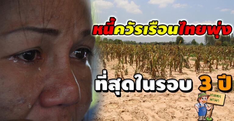 หนี้ครัวเรือนไทยพุ่ง สูงสุดในรอบ 3 ปี คาดปี 63 ทะลุ 80% ต่อจีดีพี