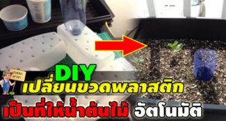 DIY เปลี่ยนขวดพลาสติก ให้กลายเป็นระบบให้น้ำต้นไม้อัตโนมัติ
