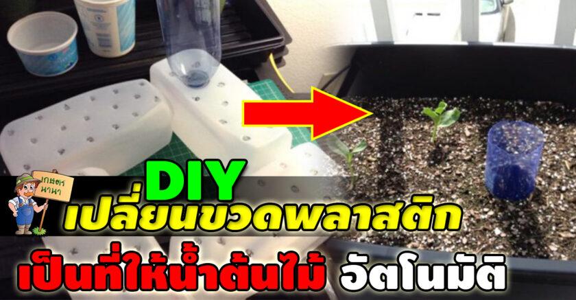 Kaset NaNa เกษตร นานา DIY เปลี่ยนขวดพลาสติก ให้กลายเป็นระบบให้น้ำต้นไม้อัตโนมัติ