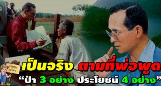 """""""ป่า 3 อย่าง ประโยชน์ 4 อย่าง"""" เป็นจริงตามที่พ่อพูด """"3 คำ"""" นี้นี่เองที่พ่อหลวงใช้ ช่วยชีวิตคนไทยให้ดีขึ้น"""