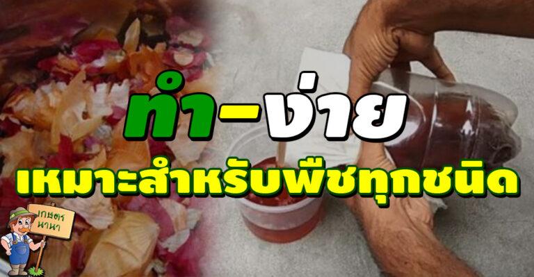 น้ำหมักเปลือกหัวหอม บำรุงพืช ไร้สารเคมี ทำเองได้ง่ายๆแต่ได้ผลดี