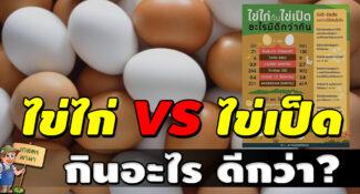ระหว่าง ไข่ไก่ กับ ไข่เป็ด อะไรมีดีกว่ากัน กินไข่อะไรดีกว่า