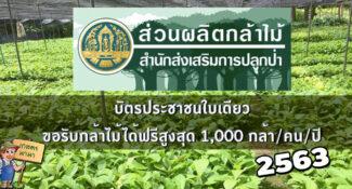 รวมข้อมูล และ 115 สถานที่รับ 'กล้าไม้ฟรี' ทั่วประเทศ จากกรมป่าไม้ ปี 2563