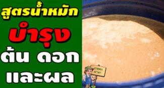 วิธีทำน้ำหมัก น้ำสกัดชีวภาพนมสด (บำรุงต้น ดอก และผล)