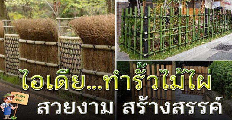 ไอเดียรั้วไม้ไผ่แบบสร้างสรรค์ แบบนี้ไม่ล้ำเขตเพื่อบบ้านแน่นอน