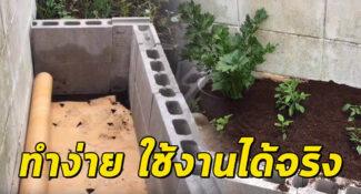 ไอเดียทำแปลงปลูกผัก ใช้พื้นที่น้อย ทำเองได้ง่ายๆ ที่บ้าน เพื่อความมั่นคงทางอาหาร