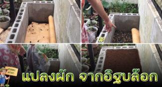 ไอเดีย ทำแปลงปลูกผัก จากอิฐบล๊อก ใช้พื้นที่น้อย ประหยัดงบ
